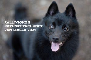Rally-tokon rotumestaruudet Vantaalla 2021
